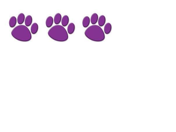 3 paws