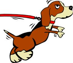 http://www.google.com/imgres?hl=en&sa=X&tbo=d&biw=1280&bih=595&tbm=isch&tbnid=3jX3NItjMmKRAM:&imgrefurl=http://www.thedogtrainingsecret.com/LeashTraining/Loose-Leash/&docid=Mk78VPerURxprM&imgurl=http://www.thedogtrainingsecret.com/s/3M_YReISLUOdzOFOpj1Wbg/dogpullingleash.png&w=300&h=260&ei=XUrOUKOuHaKE2gW-2IGIBg&zoom=1&iact=hc&vpx=802&vpy=122&dur=500&hovh=208&hovw=240&tx=169&ty=100&sig=116309434848795862003&page=1&tbnh=143&tbnw=165&start=0&ndsp=19&ved=1t:429,r:4,s:0,i:102